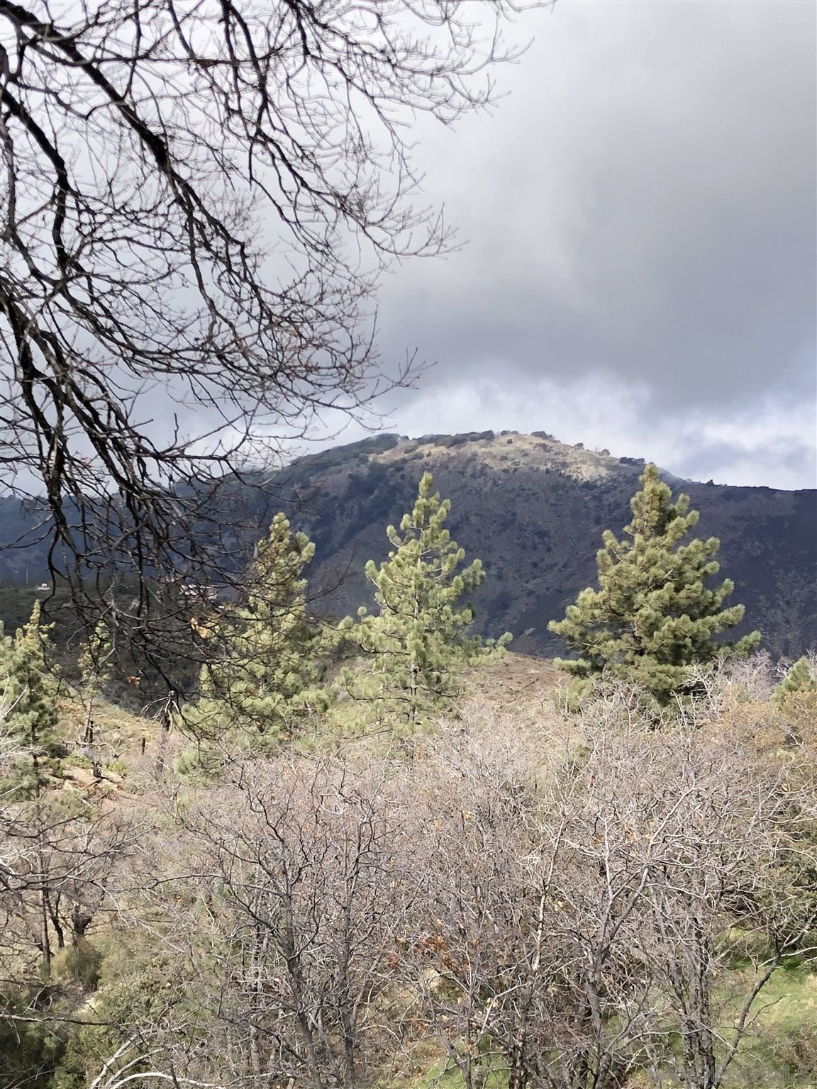 Photo of 2535 Bonita Vista Drive, Julian, CA 92036 (MLS # 210004377)