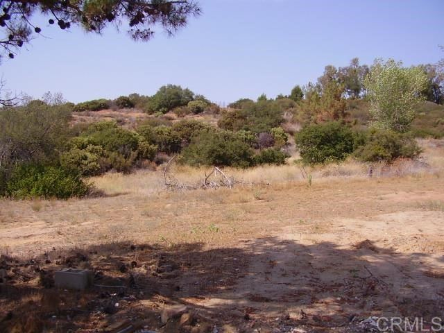Photo of 23490 Old Ranch Rd, Alpine, CA 91901 (MLS # PTP2105394)