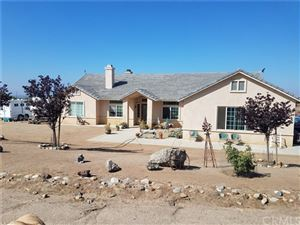 Photo of 21705 Twin Canyon Dr., Nuevo/Lakeview, CA 92567 (MLS # 301118407)