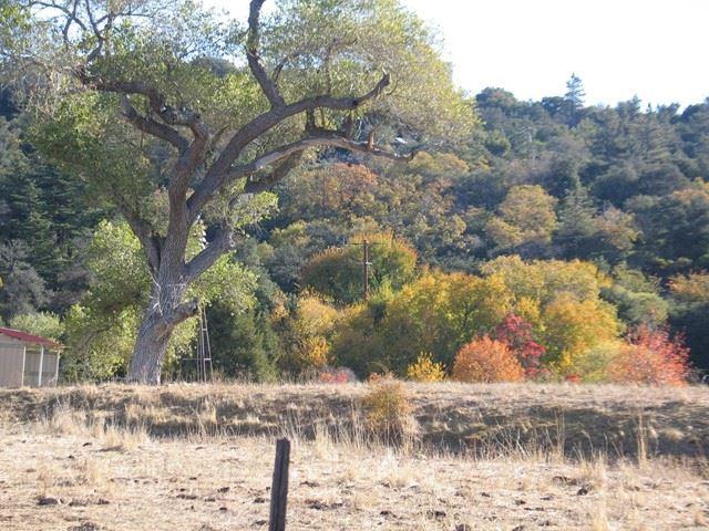 Photo of 1384 Banner Road, Julian, CA 92036 (MLS # PTP2107432)