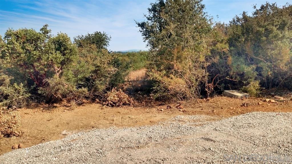 Photo of 7654 Starlight Way, Julian, CA 92036 (MLS # 210021525)