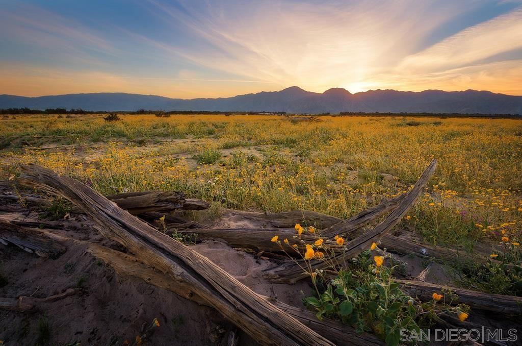 Photo of 0 Borrego Valley Rd, Borrego Springs, CA 92004 (MLS # 210009619)