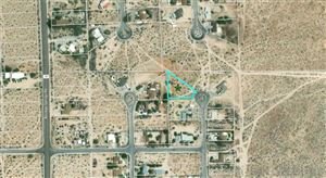 Photo of 0 Double O Rd, Borrego Springs, CA 92004 (MLS # 190028625)