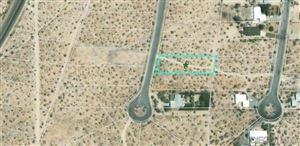 Photo of 0 Frying Pan Rd, Borrego Springs, CA 92004 (MLS # 190028664)