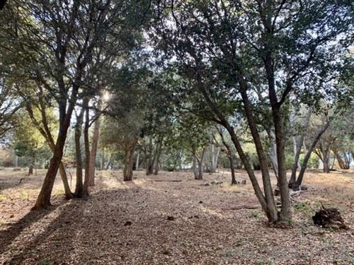 Tiny photo for 000 Pine Ridge Ave., Julian, CA 92036 (MLS # 190036800)