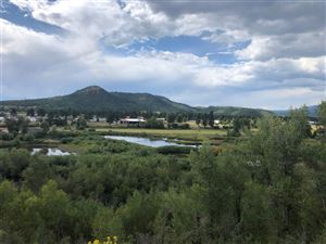 Photo of Eagles Nest Lot, Chama, NM 87520 (MLS # 201904060)