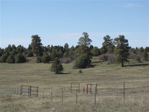 Photo of Tracts B & C Willow Creek, Chama, NM 87520 (MLS # 201902099)
