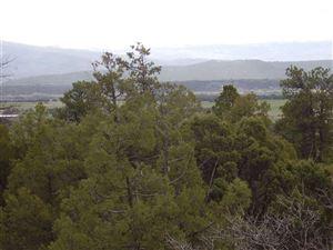 Photo of Turkey Trail, Laguna Vista, Tierra Amarilla, NM 87575 (MLS # 201800106)