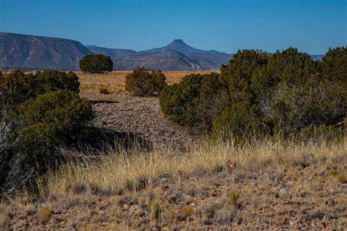 Photo of 25 Hunter Drive, Medanales, NM 87548 (MLS # 201905120)