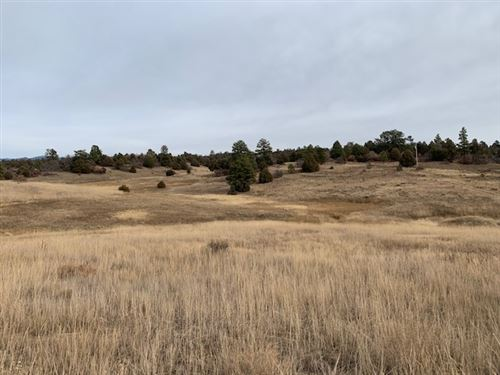 Photo of Lot 16 Deer Trail Chama West, Chama, NM 87520 (MLS # 201905180)