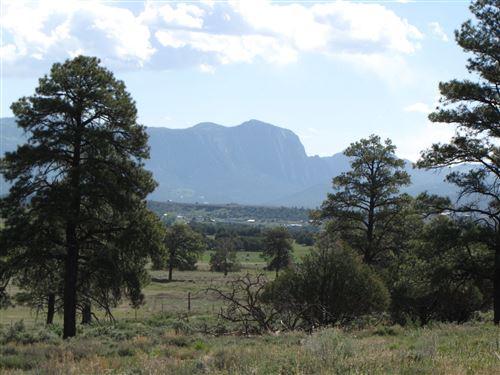 Photo of Garth Tract, Longhorn Estates, Los Ojos, NM 87551 (MLS # 201905186)
