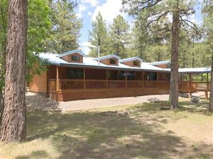 Photo of 84 Private Drive 1754, Chama, NM 87520 (MLS # 201902194)