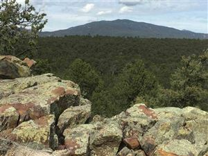 Photo of Tract D Soaring Hawk Trail, Canoncito, NM 87508 (MLS # 201805255)