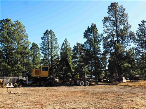 Photo of 610 3rd St #Village of Chama, Chama, NM 87520 (MLS # 201905277)