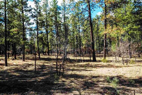 Photo of Bk 2, Lot 23 Hollow Oak, Brazos Estates #Brazos Estate, Chama, NM 87520 (MLS # 202001293)