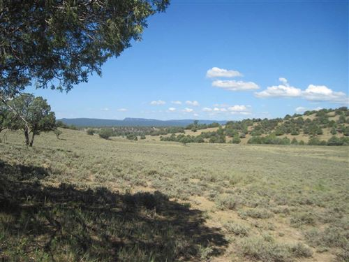 Photo of County Road 341, Chama, NM 87520 (MLS # 201804298)