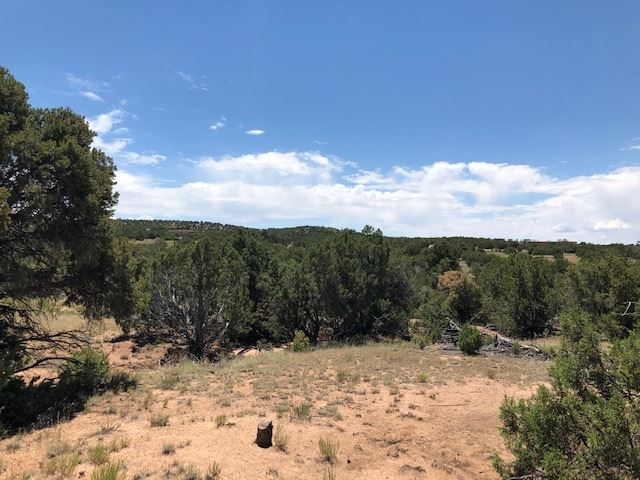 Photo for 0 LA TIERRA #Phase III, Santa Fe, NM 87506 (MLS # 201903317)