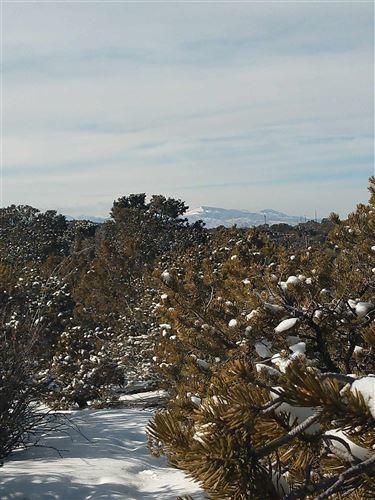 Photo of 232 Camino Del Norte, Santa Fe, NM 87501 (MLS # 202000359)