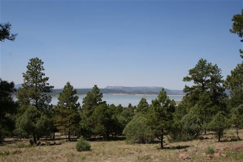 Photo of Off Canyon Drive, Tierra Amarilla, NM 87575 (MLS # 201703395)
