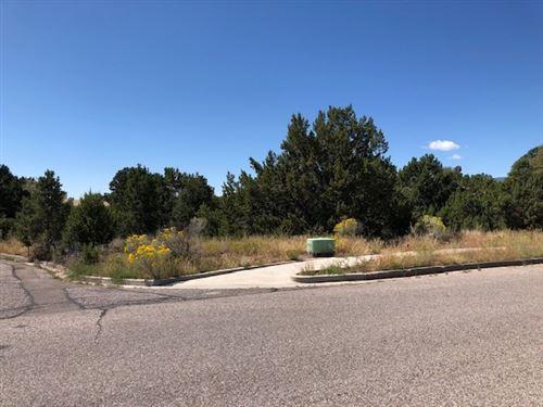 Photo of 111 Laguna St., Los Alamos, NM 87544 (MLS # 201904424)