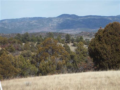 """Photo of Tract A """"Survey for Terry Little"""", Chama, NM 87520 (MLS # 201801452)"""