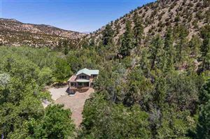 Photo of 595-A CR 194, Canones, NM 87516-9999 (MLS # 201802453)