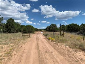 Photo of 73 Gabaldon, Ojo De La Vaca, NM 87508 (MLS # 201904526)
