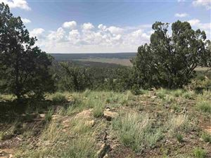 Photo of Forest 124A Road, Glorieta, NM 87535 (MLS # 201805545)