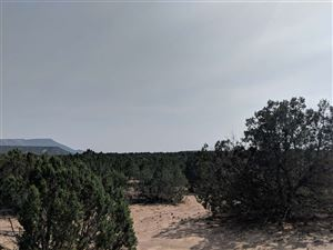 Photo of lot 8 LANDS OF OLGUIN JUAN C T, Ponderosa, NM 87044 (MLS # 201804552)