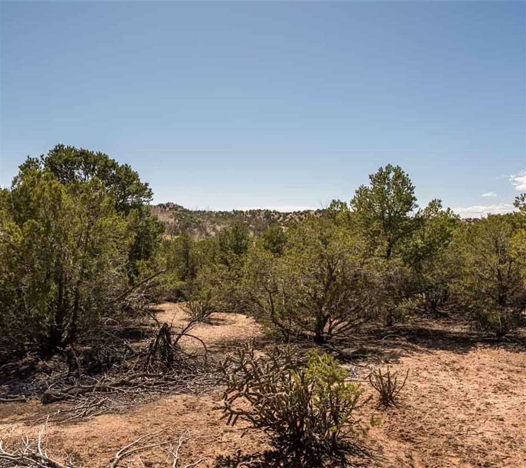 Photo for 1479 Bishops Lodge Lot C #Lot C, Tesuque, NM 87506 (MLS # 201501559)