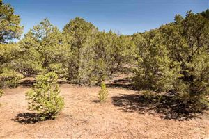 Tiny photo for 1479 Bishops Lodge Road Lot B #Lot B, Tesuque, NM 87506 (MLS # 201501562)