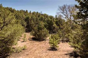 Tiny photo for 1479 Bishops Lodge Road #Lot B, Tesuque, NM 87506 (MLS # 201501562)