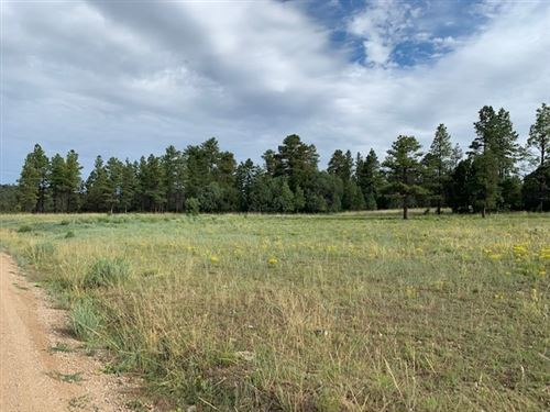 Photo of TBD FR 137 Forest Service Rd 137, Canjilon, NM 87515 (MLS # 201903562)