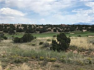 Photo of 46 Paseo Aragon, Santa Fe, NM 87506 (MLS # 201904564)