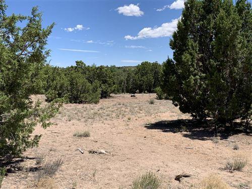 Photo of 68 Sloman Lane, Santa Fe, NM 87507 (MLS # 202002601)