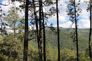 Photo of McElvaine Tract The Brazos Canyon, Chama, NM 87520 (MLS # 201805675)