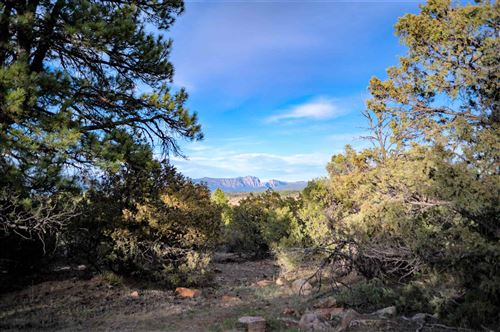 Photo of 35 Parkview Hills, Los Ojos, NM 87551 (MLS # 202001742)