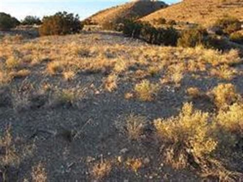 Photo of 0 Yerba Buena Lot 3, Cerrillos, NM 87010 (MLS # 202000780)