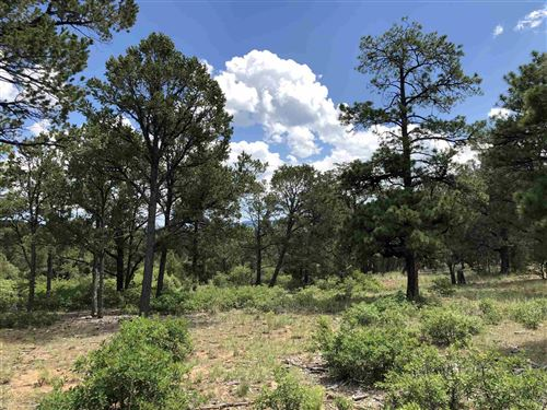 Photo of 58 Silver Feather Trail #Lot 11, Pecos, NM 87552 (MLS # 201903805)