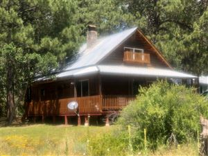 Photo of 687 State Road 512, Chama, NM 87520 (MLS # 201903814)
