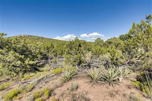 Photo of 12 Camino Costadino, Santa Fe, NM 87508-9140 (MLS # 201903823)