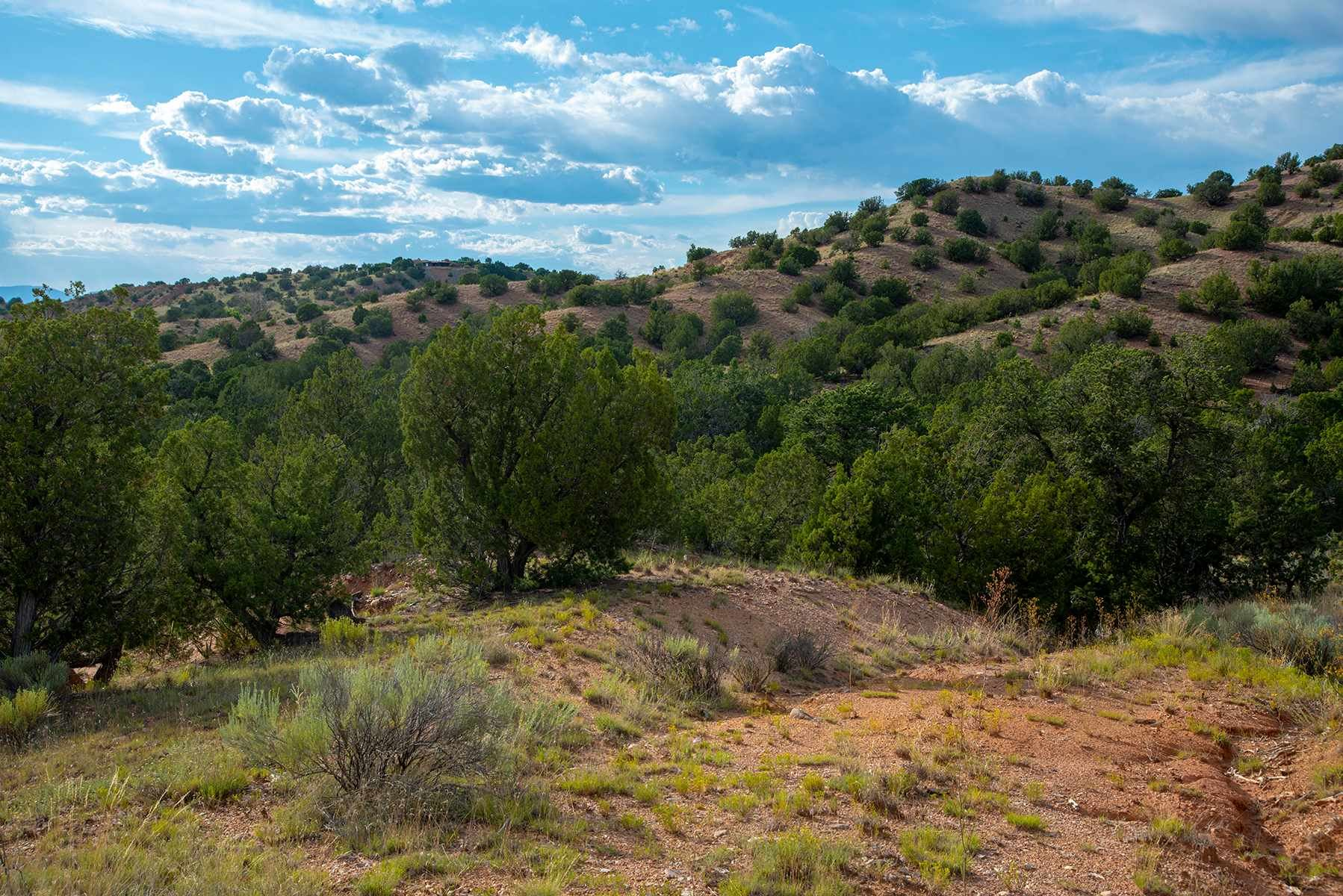 Photo for 58 Estrada Calabasa #Lot 56, Santa Fe, NM 87506 (MLS # 201903828)