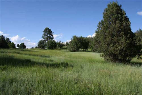 Photo of OFF CR 342, Chama, NM 87520 (MLS # 201801831)