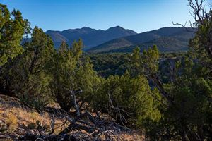 Photo of 50 Rocinante, Cerrillos, NM 87010 (MLS # 201904835)