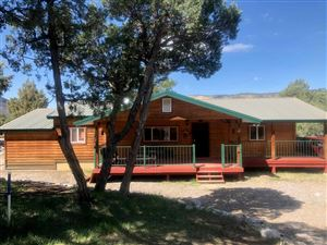 Photo of 12 South Leaning Pine Dr #12, Los Ojos, NM 87551 (MLS # 201901843)
