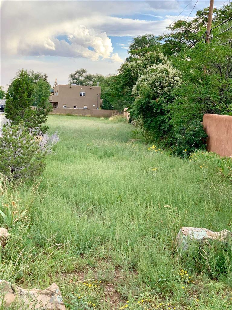 Photo for 832 Don Diego Ave, Santa Fe, NM 87505 (MLS # 201903899)