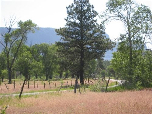 Photo of West Tract Cottonwood Tracts, NMSR 512, Chama, NM 87520 (MLS # 202000957)