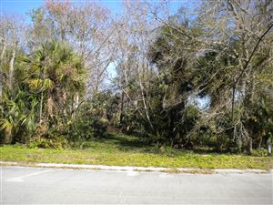 Photo of 3832 Valkaria Road, Malabar, FL 32950 (MLS # 858164)