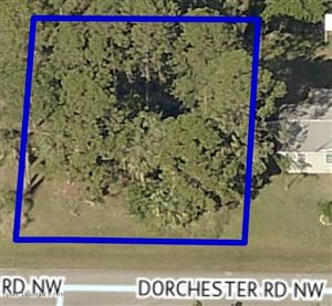 Photo of 1035 NW Dorchester Road, Palm Bay, FL 32907 (MLS # 855940)