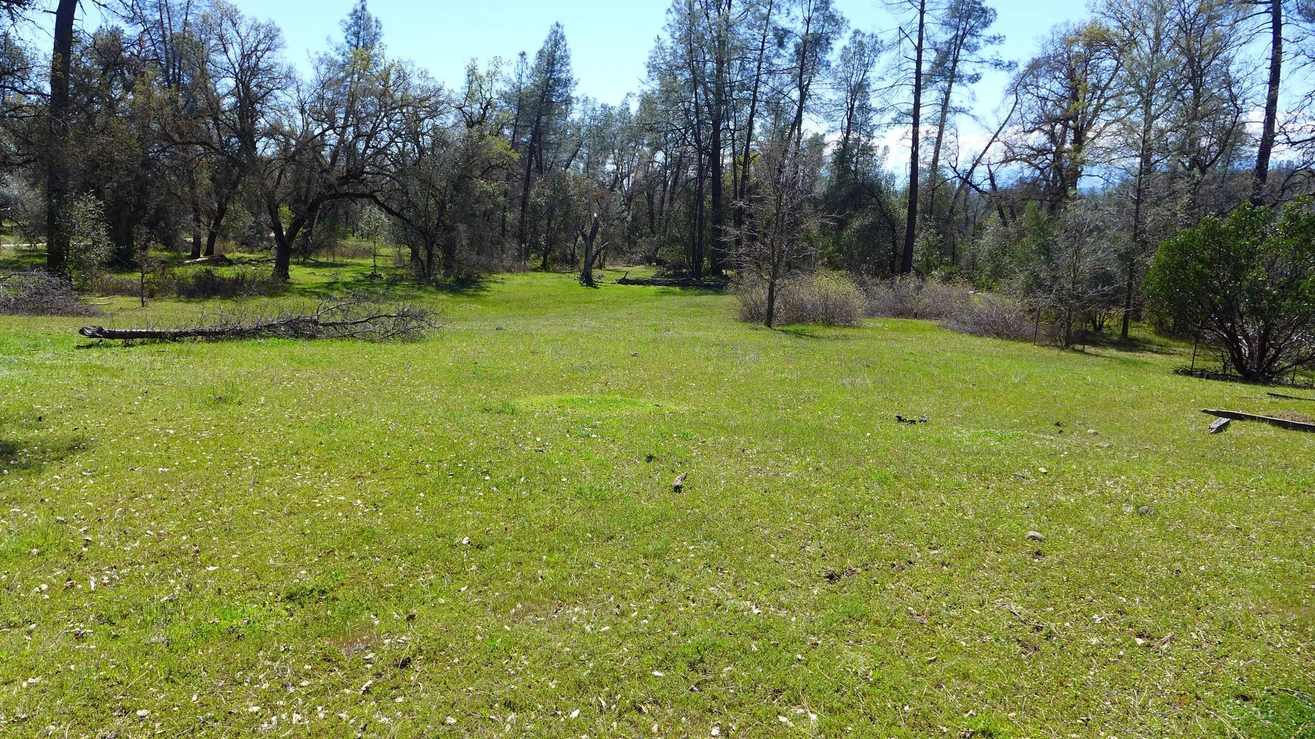 Photo of 9.6 +- Ac Gas Point Rd, Cottonwood, CA 96022 (MLS # 20-290)